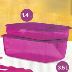 Set of two Tupperware Rectangular